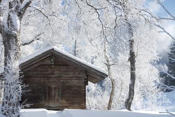 Verschneite Winterlandschaft mit vereisten Bäumen und altem Hau
