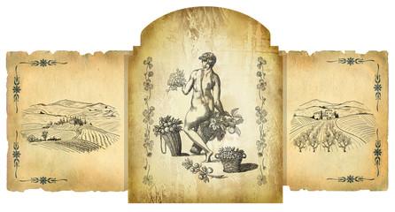 Vine illustration