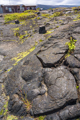 Lava along the Chain of Crater's Road, Hawaii