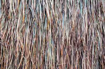 Thatched Straw Wall