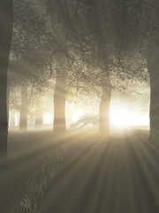 Dragon in a Misty Forest with Rays of Bright Sunlight