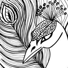 Decorative ornamental peacock