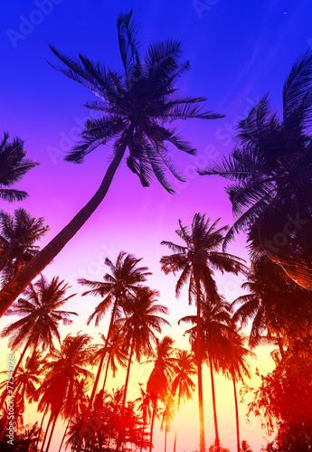 Foto op Aluminium Strand Palm trees silhouettes on tropical beach at sunset.