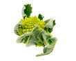 Isolated Romanesco Broccoli