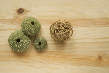 sea urchins on wooden cutting board