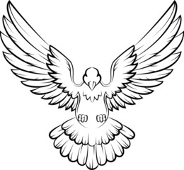 Dove birds logo for peace concept and wedding design