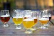 Glasses of Craft Beer for Tasting - 77556358