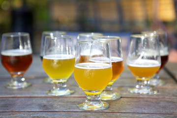 Glasses of Craft Beer for Tasting