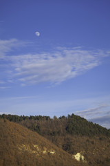 Moon on a hill. Color image