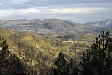Oltrepo winter panorama. Color image