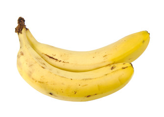 Frontal view of two bananas isolated on white background.