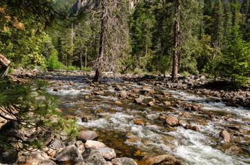 fiume nello Yosemite National Park in California