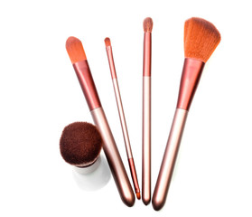 Set of red-fur brushes