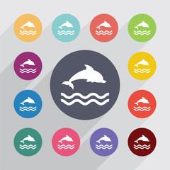 dolphin circle, flat icons set