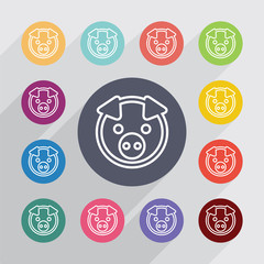 pig outline circle, flat icons set