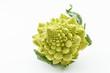 romanesko broccoli