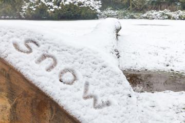 Word snow written on lying oak tree trunk in nature