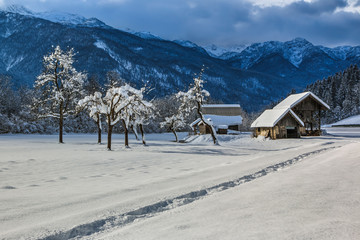 Cottages and the trees with snow storm above mountains