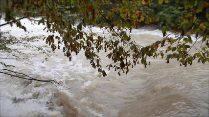 View of a muddy river running