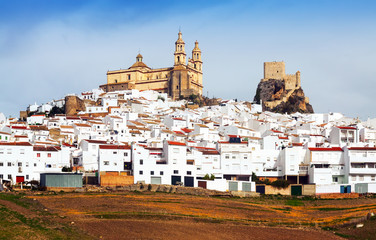 view of  old andalusian town.  Olvera