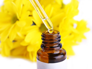 Dropper bottle of perfume with yellow chamomile