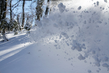 spray snow, freeride in the winter mountains
