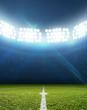 Leinwandbild Motiv Stadium And Soccer Pitch