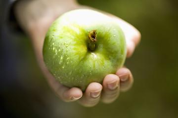 Hand holding fresh green apple