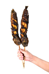 Grilled catfish with bamboo sticks, isolated on white background