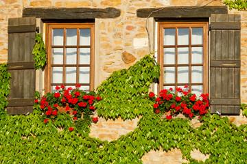 Beautiful window with shutters