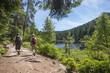 Wanderer am Herrenwieser See, Westweg, Forbach, Schwarzwald, Bad - 77612558