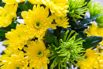 Bouquet of yellow and green Chrysanthemum