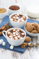 cocoa with marshmallows and almond cookies on white wooden table