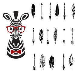 Set of arrows, vector illustration
