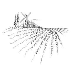 Graphic landscape with mill