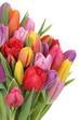 Obrazy na płótnie, fototapety, zdjęcia, fotoobrazy drukowane : Blumenstrauß mit Tulpen im Frühling oder Muttertag Freisteller
