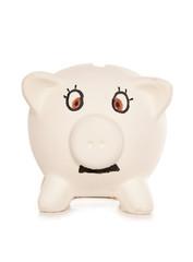 Mr piggy bank