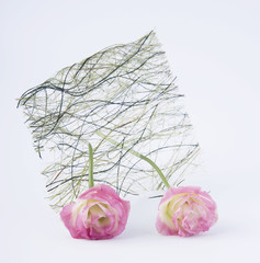 two pink rosebud with a straw.