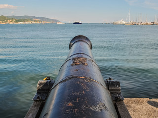 Cannon on the dock