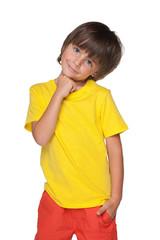 Cute little boy stands