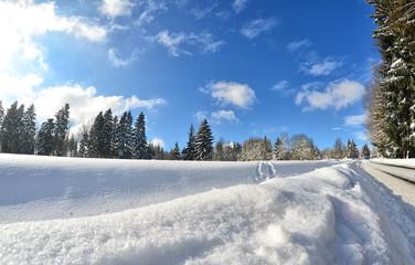 Winter Landschaft Schnee