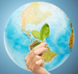 woman hand with green sprout over earth globe