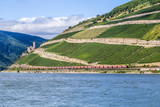 beautiful vineyards at  the rhine valley in Ruedesheim with trai