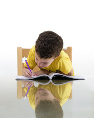 Young Schoolboy Studying with Concentration