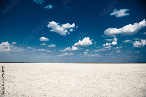 Makgadigadi Pan, Botswana, Africa - 77653731