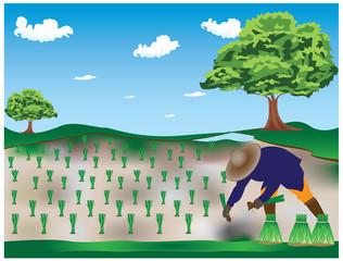 the farmer at countryside vector design