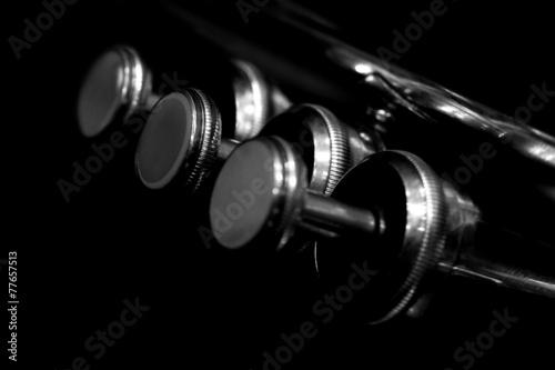 Fragment trumpet closeup - 77657513