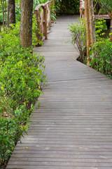 wooden walkway in green nature garden