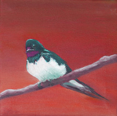 Painting, adult swallow