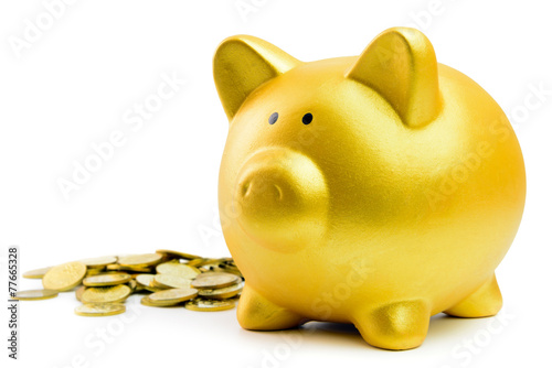 Piggy bank and coins - 77665328